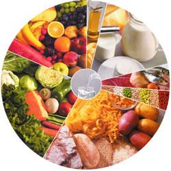 art3-Batch#7005-kw3- formacion seguridad alimentaria